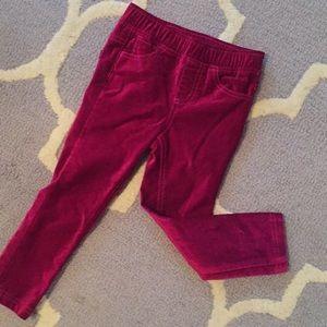 Tea Collection Bottoms - Magenta velour skinny pants